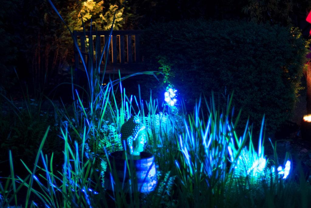 Gartenparty Teich